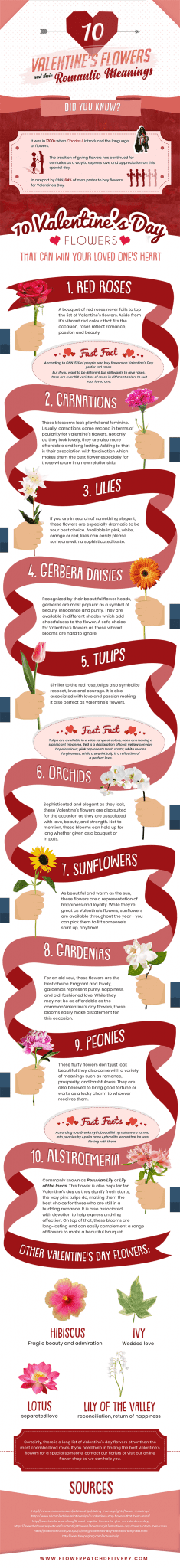 Valentine's Flowers and Their Romantic Meanings