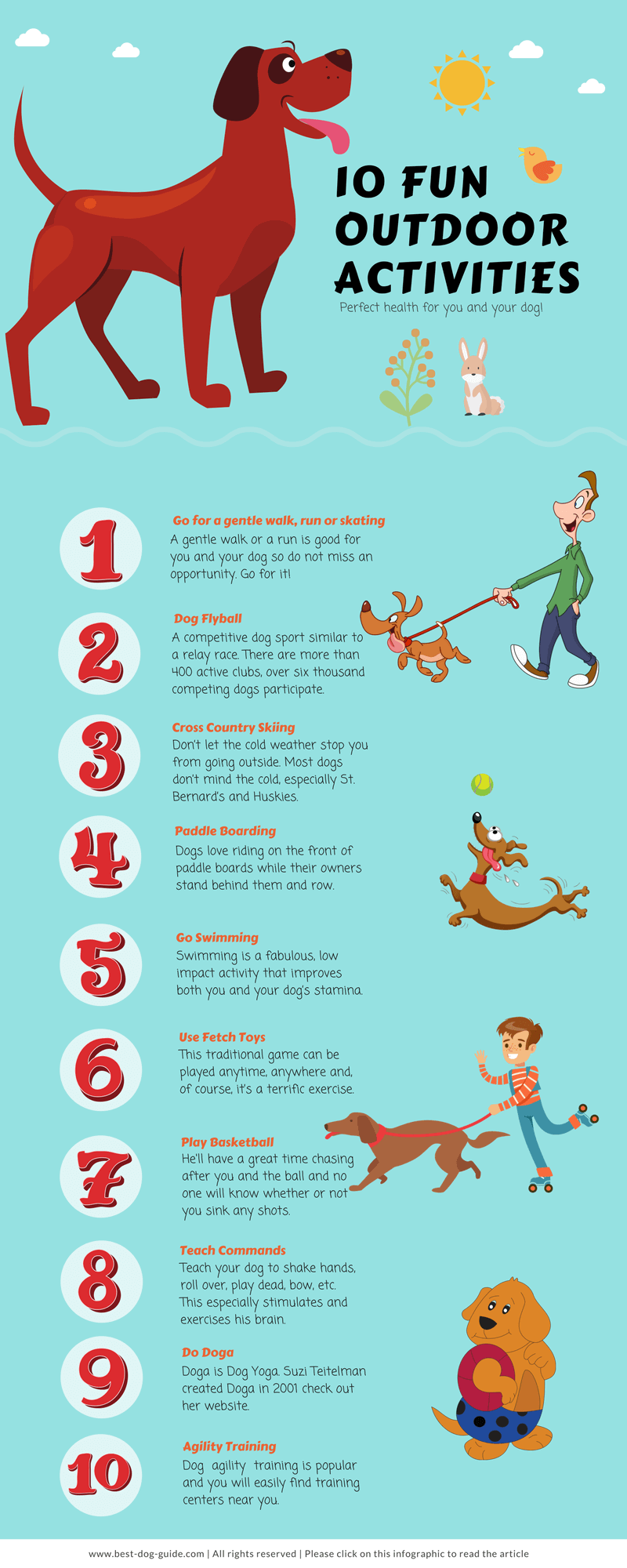 10 Fun Outdoor Activities For You & Your Dog